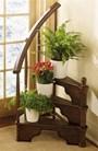 Cách trồng cây xanh trong nhà theo phong thủy